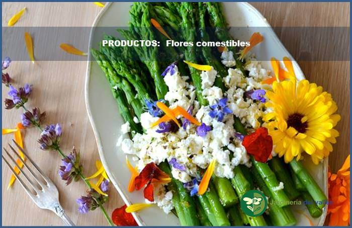 productos jardineria 4