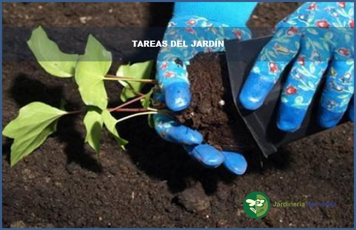 tareas del jardin