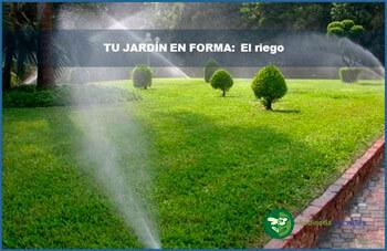 jardin-con-cesped-artificial-y-tarima-sintetica/