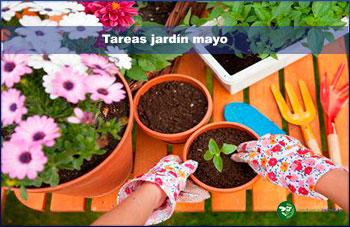 Tareas jardín mayo
