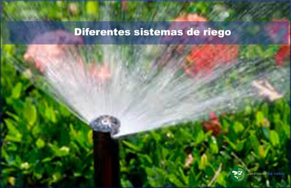 Diferentes sistemas de riego en jardinería