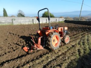 Como preparar el suelo para sembrar el césped profesionalmente