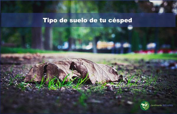 Identifica el tipo de suelo de tu césped