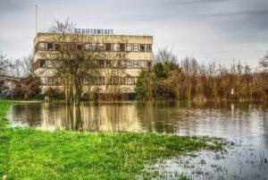 daño del césped inundado