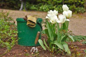 Tareas de nuestro jardín en primavera