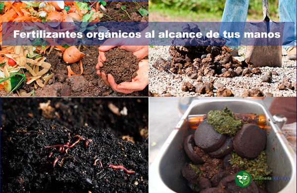 Fertilizantes orgánicos caseros fáciles de preparar