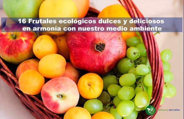 frutales ecológicos deliciosos