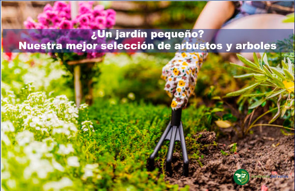¿Un jardín pequeño?