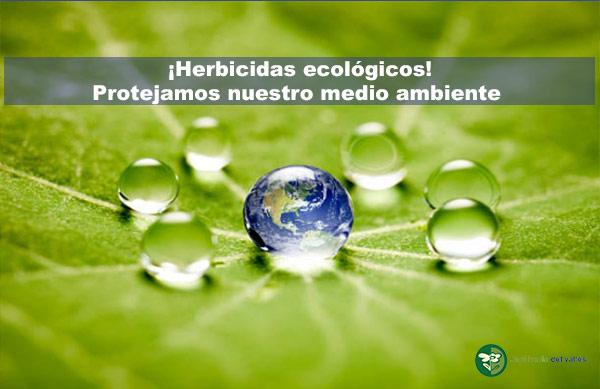 Herbicidas ecológicos