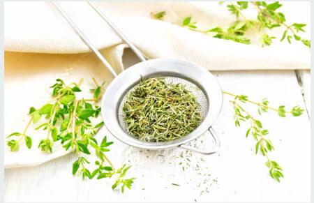 Tipos de plantas aromáticas Ajedrea
