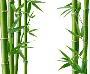 bambu plantas artificiales