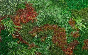 Placa jardín artificial, plantas variadas